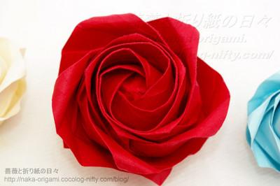 薔薇の画像 p1_6