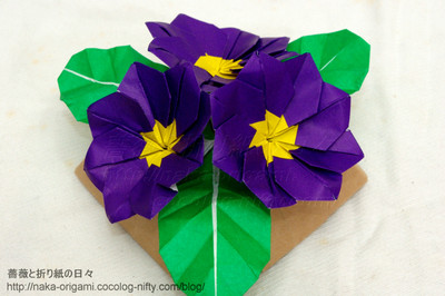 プリムラのテーブル花