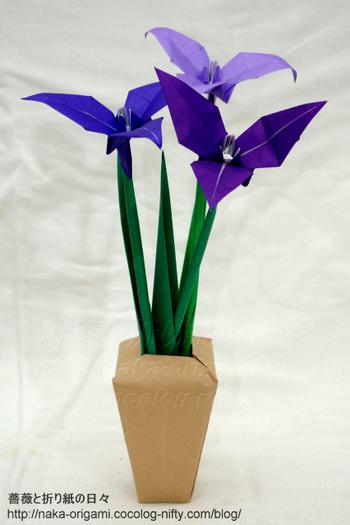 簡単 折り紙 折り紙 あやめ : naka-origami.cocolog-nifty.com