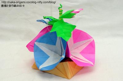 折り紙の 朝顔の折り紙の折り方 : naka-origami.cocolog-nifty.com