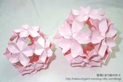 桜玉 1/125 F1.9 ISO500 内蔵ストロボ