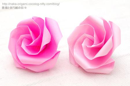 Type K+ 花芯のバラ(巡回中割折り)