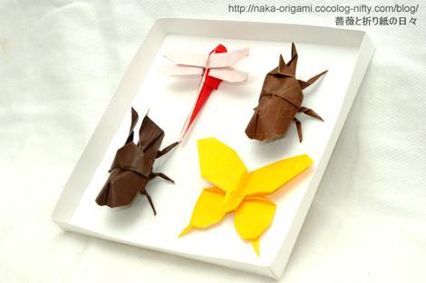 折り紙昆虫採集アレンジ