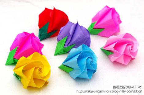 新しいバラ(巻き込み花芯構造)