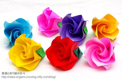 巻き込み花芯構造のバラ(C2ローズ)