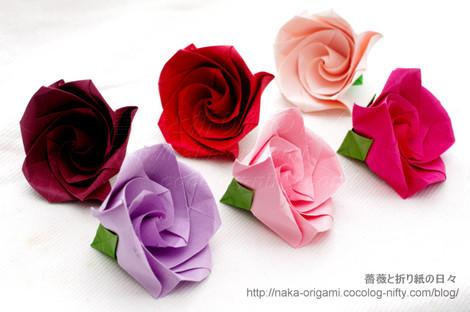 巻き込み花芯構造のバラ C3ローズ