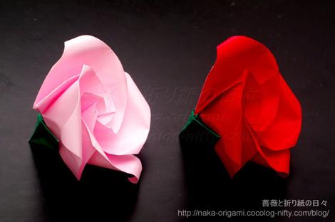 巡回中割折りのバラ K2とK2+ ローズ