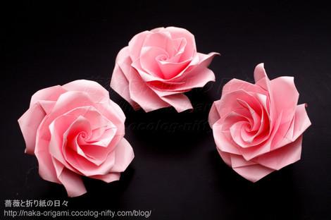 ユニットによる薔薇 U4-4aとU4-4b