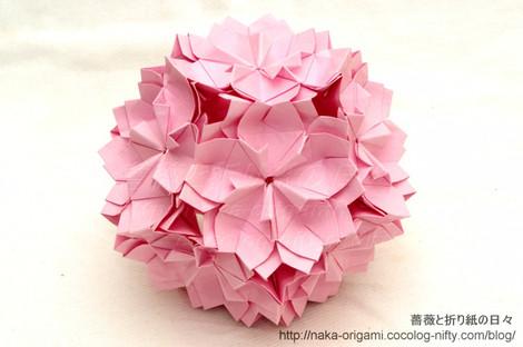 八重桜(川崎敏和氏)