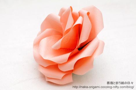 薔薇(U7L-5)