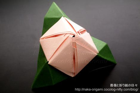 八重咲きマジックローズキューブ