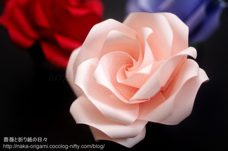 薔薇(U9s-4)創作:中 一隆