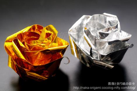 紙の裏面の出ない川崎ローズ「薔薇」