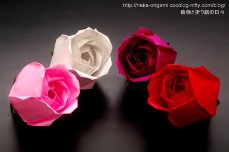 トーラス構造の薔薇(S1) 創作:中一隆