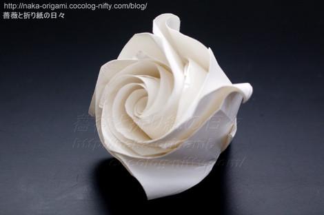 薔薇(C4)試作 創作:中 一隆