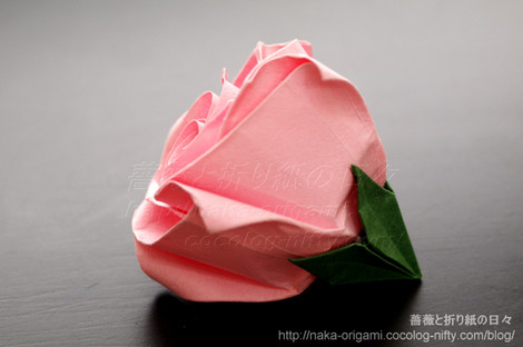 「薔薇 C5」 創作:中 一隆
