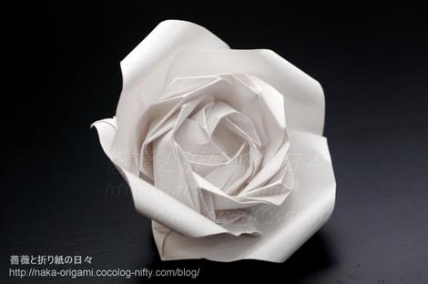 リカーシブ構造の薔薇(R2)プロトタイプ