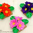 プリムラのテーブル花(2)