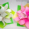 ゆりの花束-2