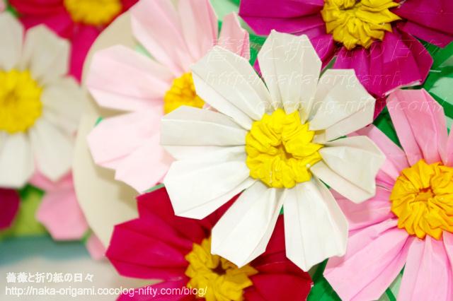 コスモスの花束(4)