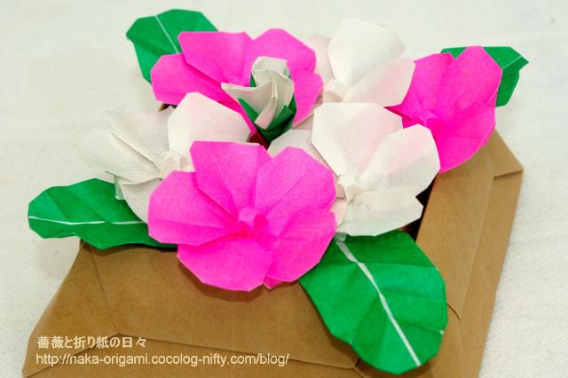日々草のテーブル花ー1
