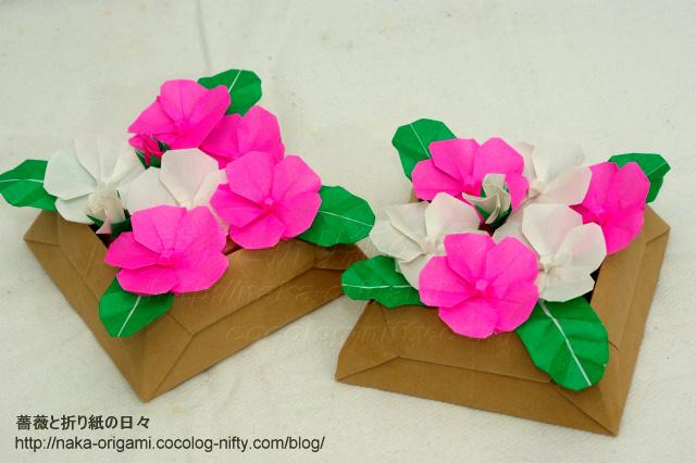 日々草のテーブル花ー2