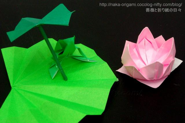 ハート 折り紙 折り紙 蓮の花 折り方 : naka-origami.cocolog-nifty.com