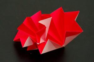 2セル同心配置のモデル