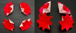 4セル独立配置のモデル