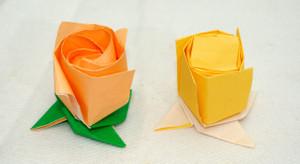 がくの付いたバラのつぼみからねじり折りを排除する