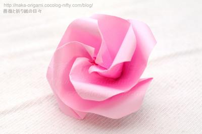 Type T 花芯のバラ