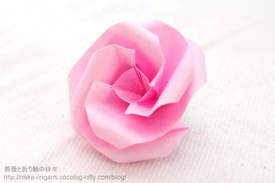 Type A 花芯のバラ