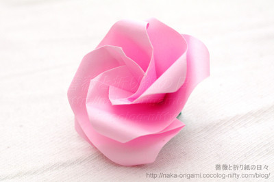 Type K 花芯のバラ(巡回中割折り)