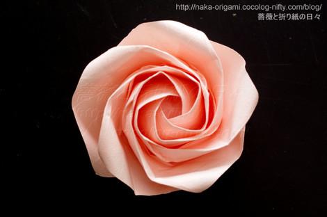 5角形から折る川崎ローズ「薔薇」L2(上から見たところ)
