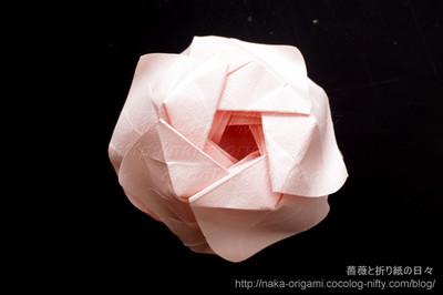 5角形から折る川崎ローズ「薔薇」L2(裏から見たところ)
