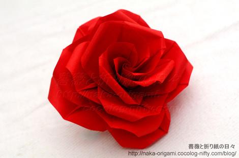 薔薇(U2c-8)
