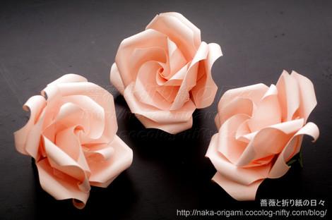 薔薇(U9-4)