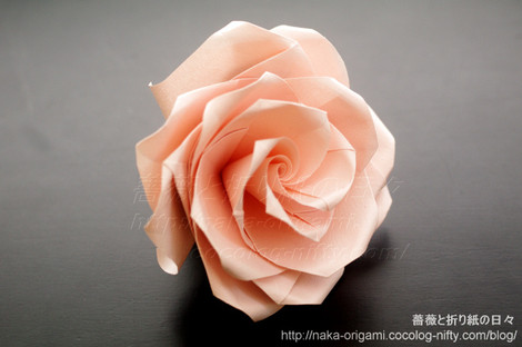 薔薇(U4-4a)