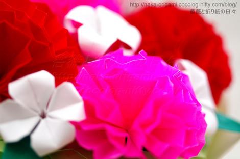 カーネーション(9セル)の花束 創作:中 一隆