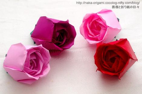 トーラス構造の薔薇(S1)