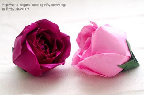 円環(トーラス)構造の薔薇(S2 Ver.1) 創作:中一隆