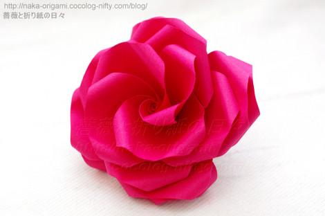薔薇U7w-4 と バラU7-4 (講習作品から)