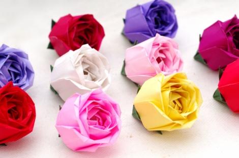 トーラス構造の薔薇S2