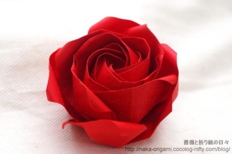 薔薇W2a 創作:中 一隆