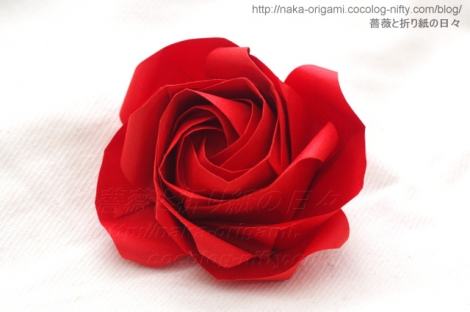 薔薇W2b 創作:中 一隆