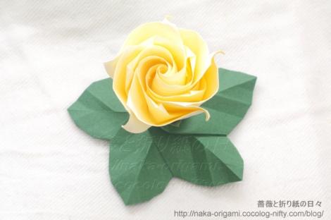 葉っぱの台五角版と薔薇C5