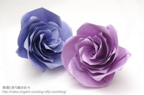 薔薇 U5-5 創作:中 一隆
