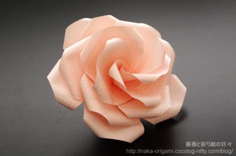 ユニットによる五角構造の薔薇(U7L-5)