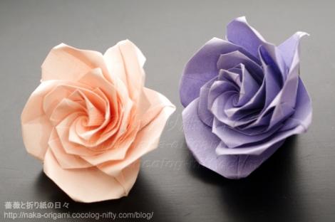 薔薇(U5-5)創作:中 一隆