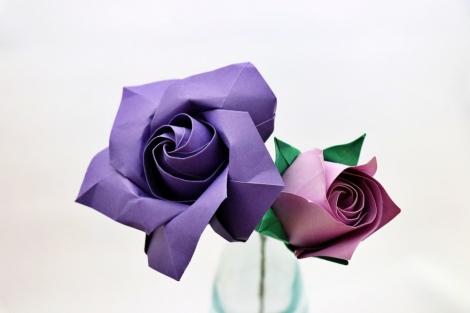 佐藤ローズ「バラのつぼみ(五角)、咲きかけのバラ」
